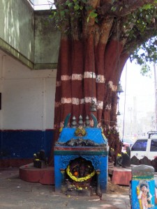 Tree Shrine